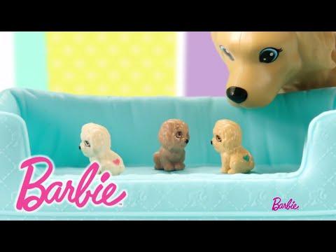 Barbie Hundemama, Welpen & Puppe | Barbie