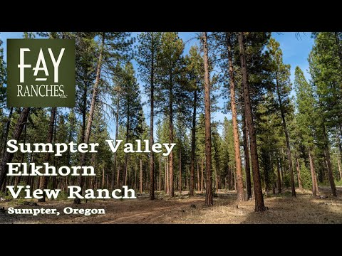 Oregon Timber Land For Sale | Sumpter Valley Elkhorn View Ranch