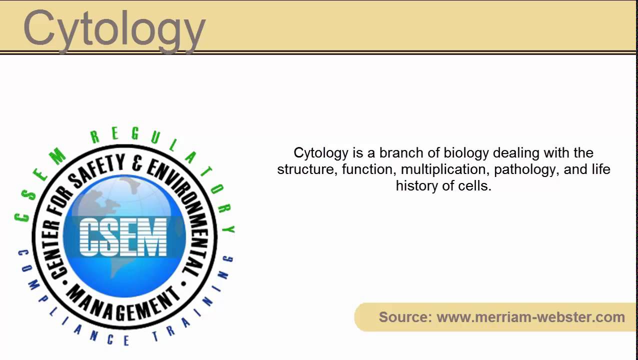 What is cytology 97