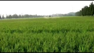 Z-Lion Agriculture UAVs (Drones)