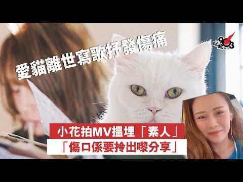 愛貓離世寫歌抒發傷痛 小花拍MV搵埋素人「傷口係要拎出嚟分享」