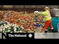 Gambar cover Canadians get creative in solving food waste problem