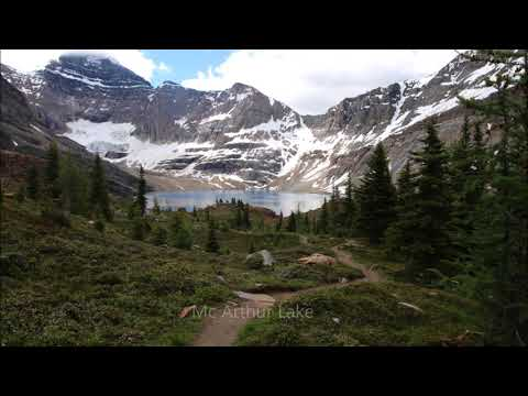 Hike from O Hara to Mc Arthur Lake