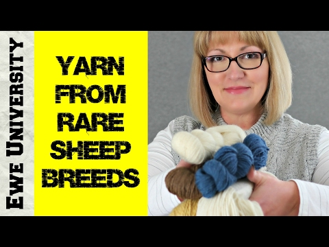 YARN FROM RARE SHEEP BREEDS