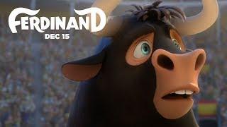 toro ferdinand