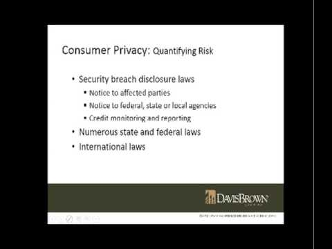 Consumer Data & Privacy: Contractual Risk Management Strategies