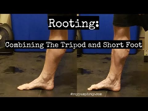 "Roting: Gripping the Ground, Creating an ""active foot"""