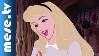 Olyan vagy, mint a kedvenc Disney Hercegnőid! Csipkerózsika - animáció (x)