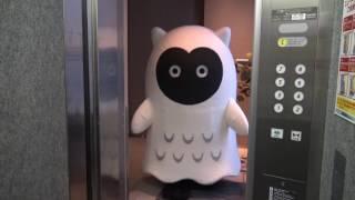 エビバデ・キューちゃん 002「エレベータに乗るデス」 thumbnail