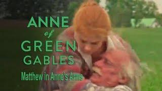 Matthew in Anne