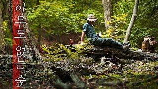 캠핑 가능한 숲 발견, 숲속 캠핑은 안전이 우선 l 옻…