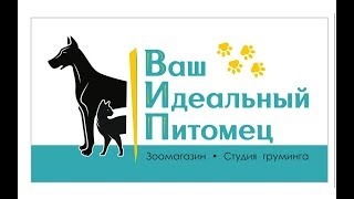 Благотворительная акция в помощь бездомным животным г.Фаниполь