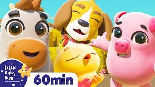 Little Baby Bum Friends - Animals | +More Nursery Rhymes  | ABCs and 123s | Little Baby Bum