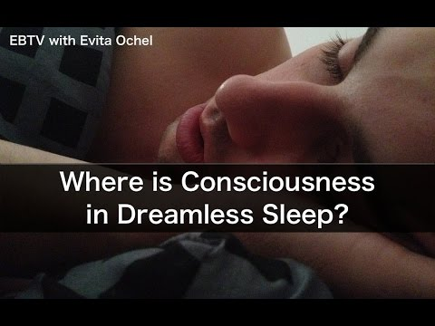 Where is Consciousness in Dreamless Sleep?