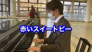 【Kobe Street Piano】赤いスイートピー