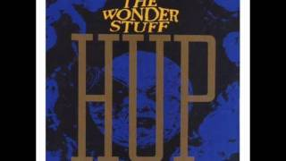 The Wonder Stuff 30 Years In The Bathroom.wmv
