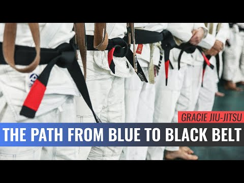 The Path from Blue to Black Belt (Master Cycle)