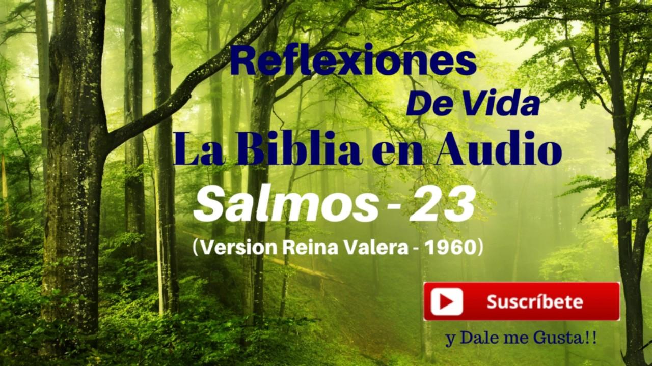 El Matrimonio La Biblia Reina Valera : Salmos la biblia en audio versión reina valera