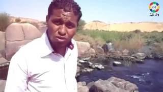 سالوجا وغزال.. معبر الطيور المهاجرة وذاكرة 500 عام من تاريخ النيل