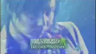 20060224 Blue Berry