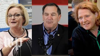 The five most competitive Senate races of 2018