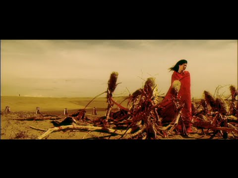 UA - 踊る鳥と金の雨 (Official Video)