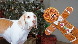 dogs-vs-evil-gingerbread-man-prank-funny-dogs-maymo-potpie