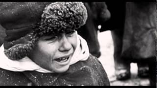 Вторая мировая война: концлагеря