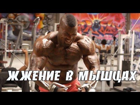 Как накачать мышцы дома -