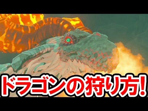 【ゼルダの伝説 BotW】フロドラ・ネルドラ・オルドラを無限ループ!ドラゴンの居場所と狩り方を公開!ゼルダの伝説 ブレス オブ ザ ワイルドの攻略動画