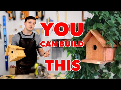 easiest-diy-birdhouse-with-minimal-tools,-every-step-explained