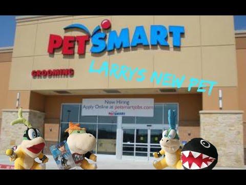 Larrys new pet (SMR Movie)