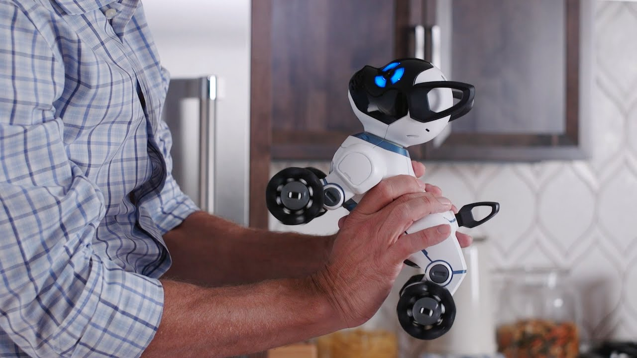 Meet Chip The World S First Lovable Robot Dog Youtube