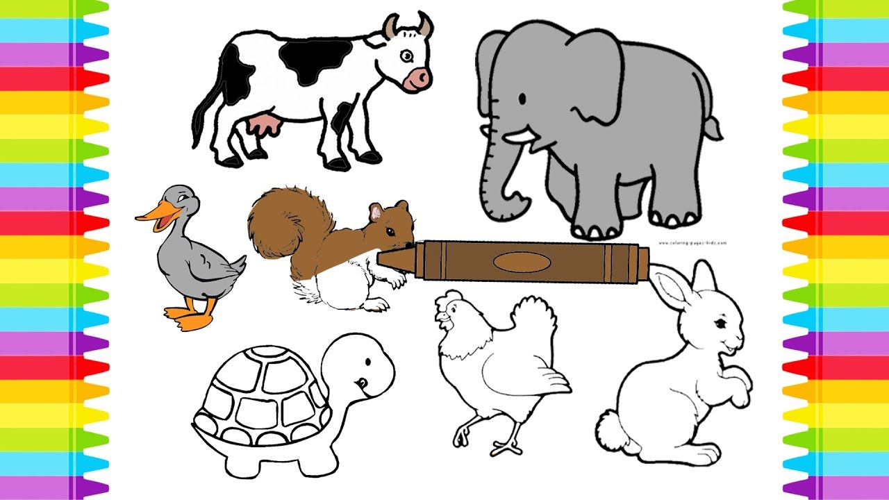 - Animals Sounds Names Coloring Book Pages For Kids Learning Colors