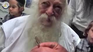 הרב חיים קנייבסקי מאמת נס מול המצלמה - הסיפור עם החגב שבא באמצע הלימוד שלו לאדן החלון ! חדש!!!