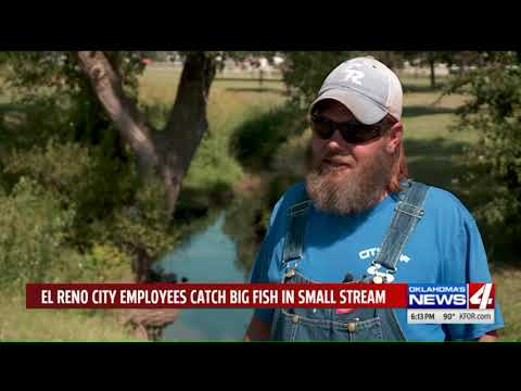 Lynch and Taco - City Workers Catch 45-Pound Catfish While Fixing Pipe