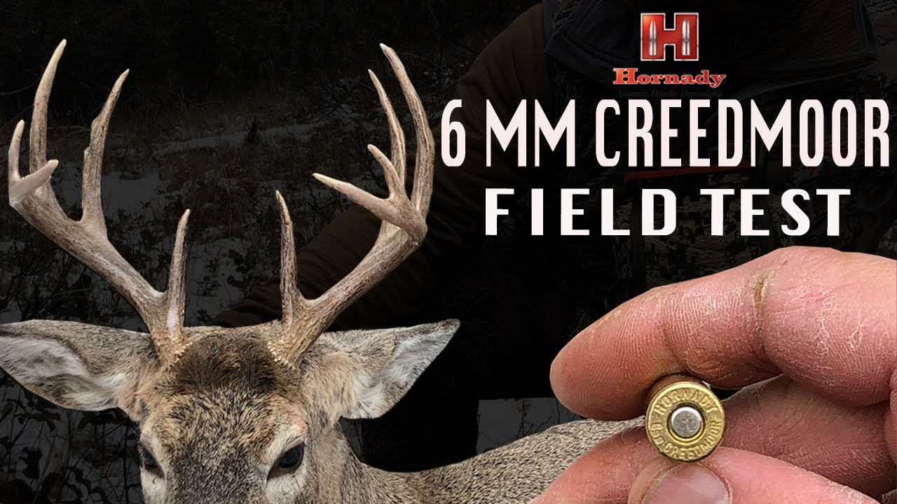 6 mm Creedmoor Field Test, Hornady's Precision Hunter featuring ELD-X