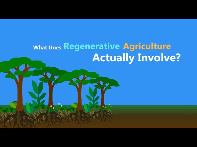 Regenerative is how we farm.
