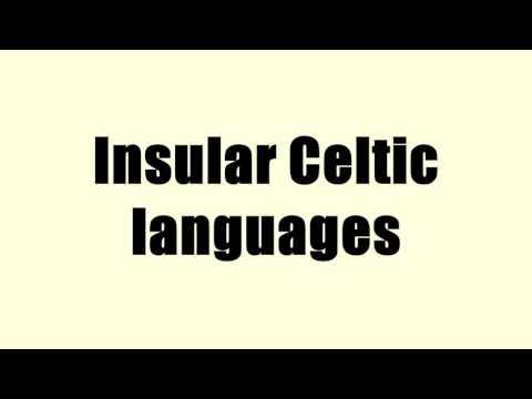 Insular Celtic languages
