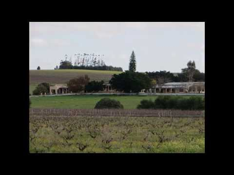 Wine & Livestock farm for sale Wellington Western Cape South Africa | AGF0067