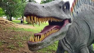 Dinosaur Land + Patsy Cline