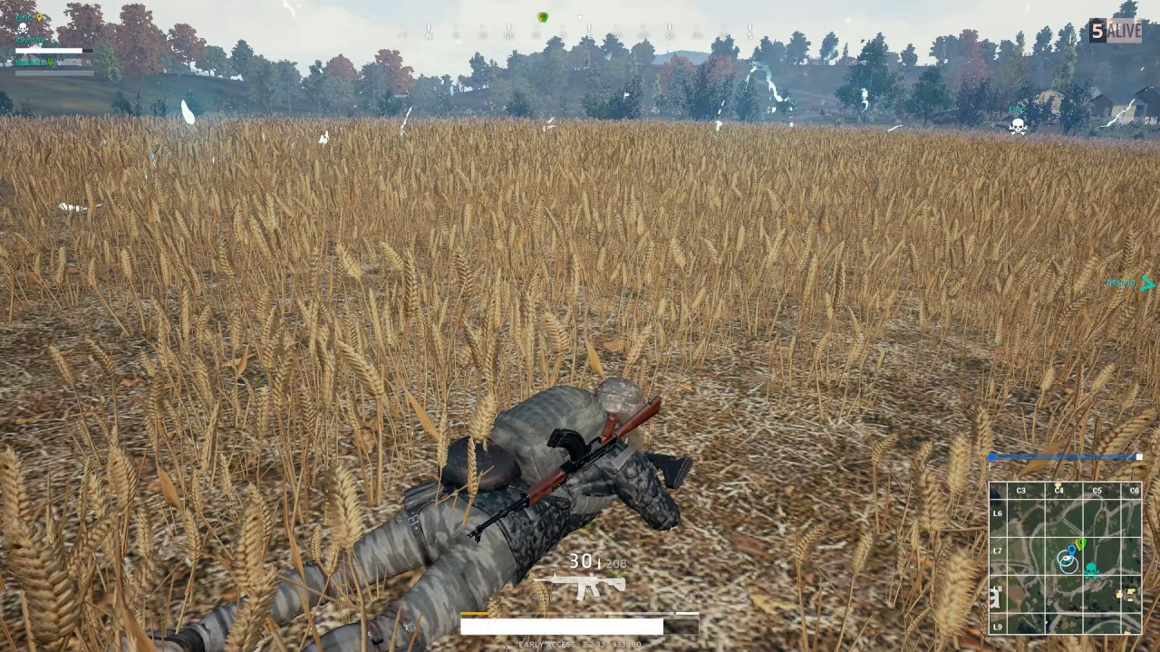Image result for PUBG prone