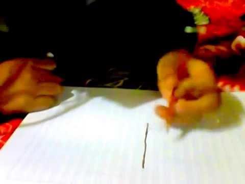 COMO DIBUJAR UNA PLANATA DE MARIHUANA  YouTube
