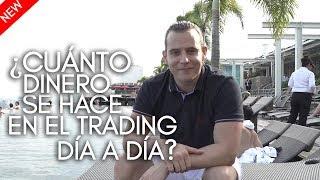 ¿Cuánto dinero se hace en el trading día a día?
