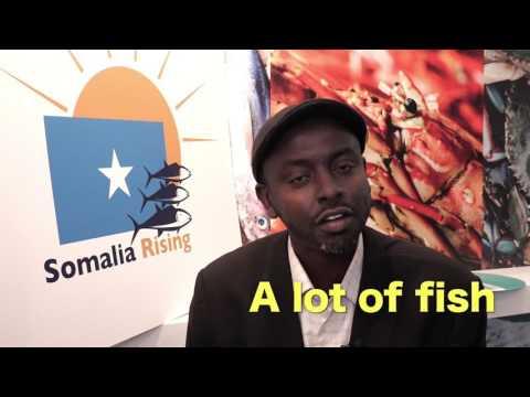Brussels expo Somalia 2017