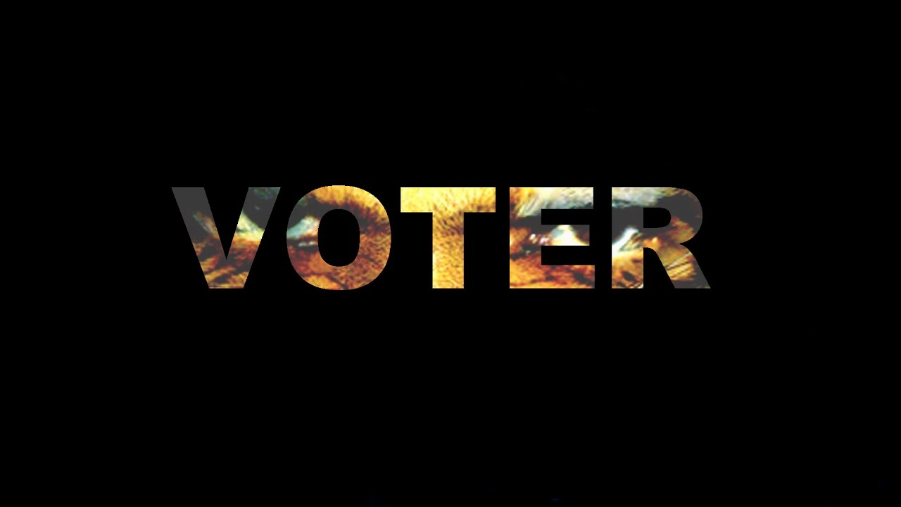 the voter by chinua achebe summary