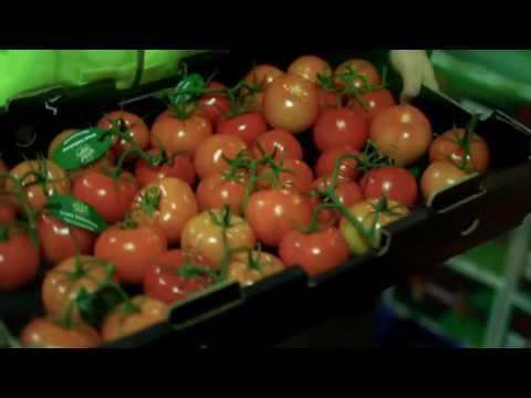 Coastal Fresh  - Fruit & Vegetable Wholesaler Gold Coast
