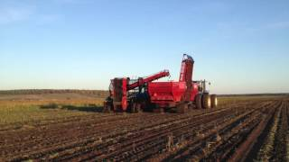 Amity Technology Harvest in Russia