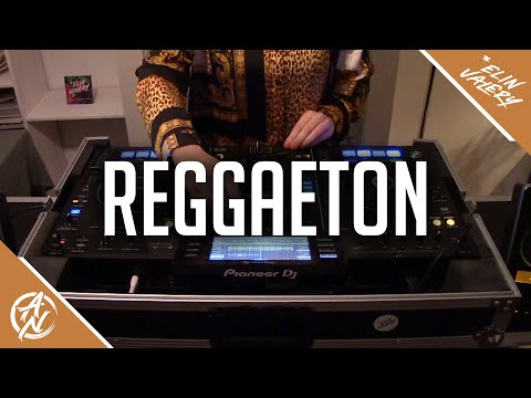 Reggaeton Mix 2019 | The Best Of Moombahton 2019 | Guest Mix By Elin Valery