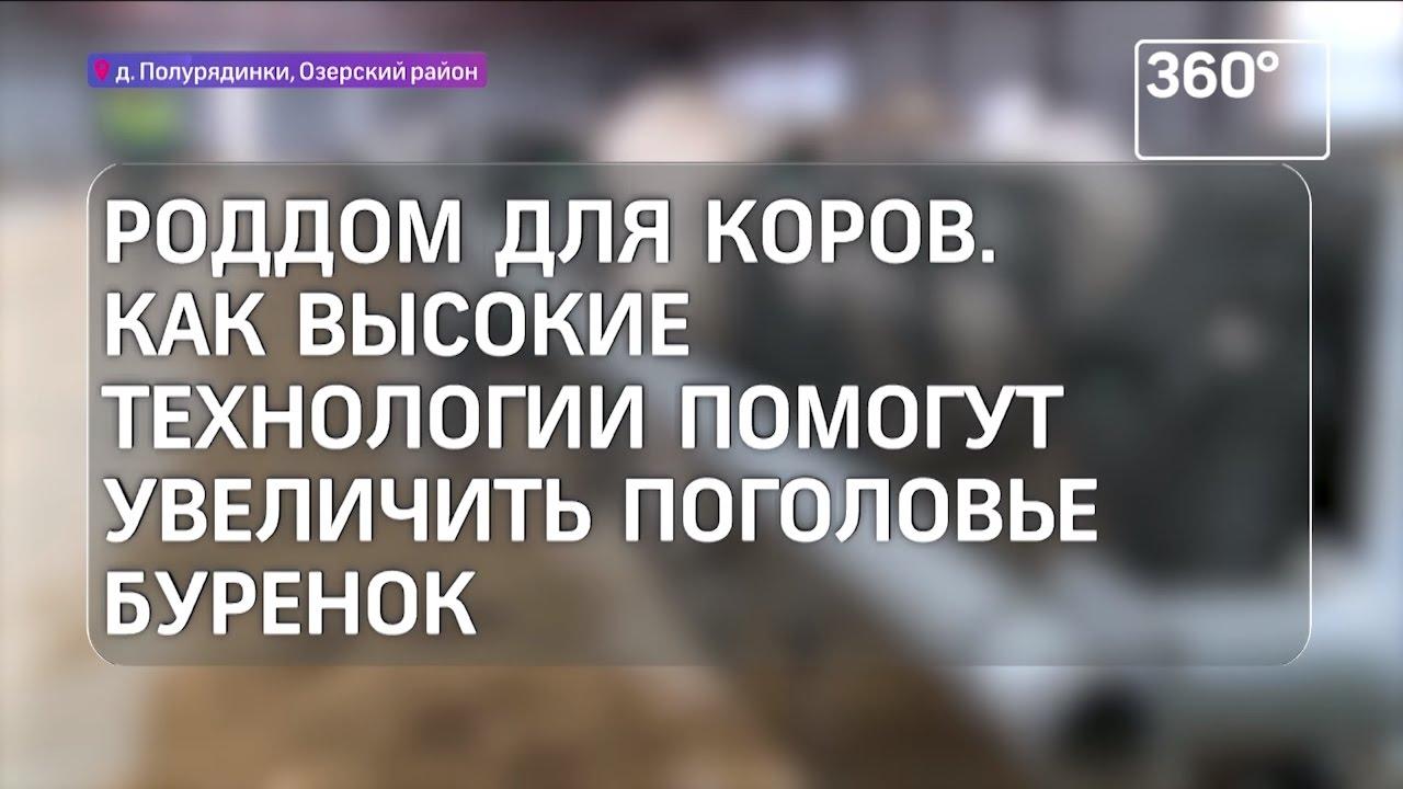 Судебный участок №165 мирового судьи озерского судебного района московской области.